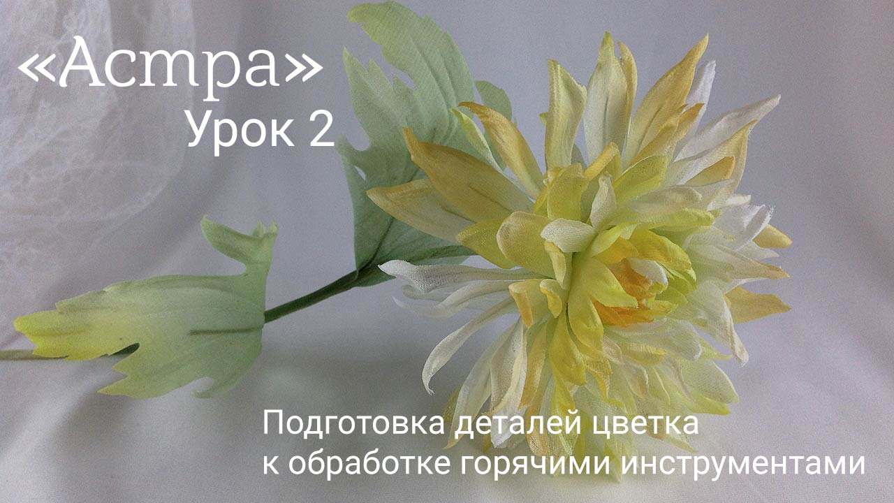 Astra-lesson-2