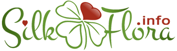 Школа шелковой флористики - SilkFlora