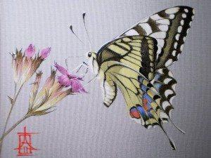бабочка на шелке