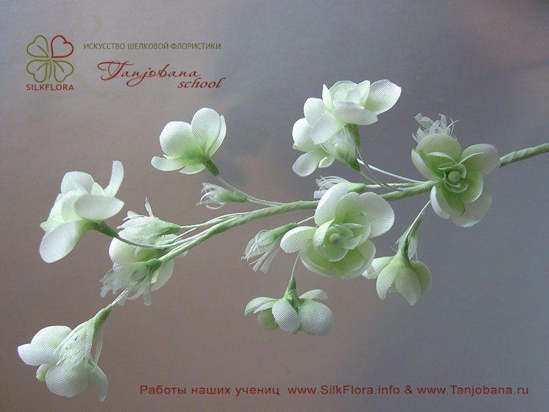 Работа Yelena Parassyuta