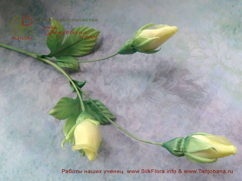 Работа Ольги Шестаковой