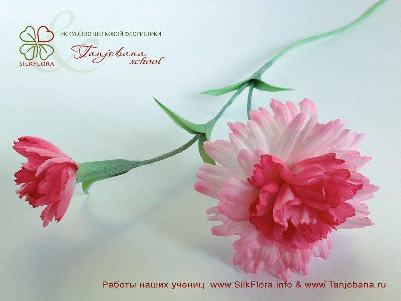 Работа Ирины Кушнир