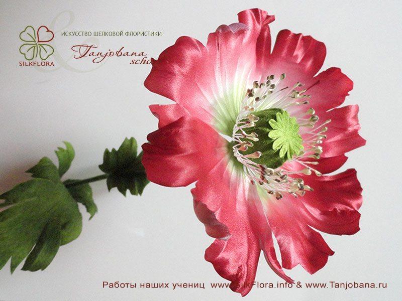 Работа Анны Тулиной