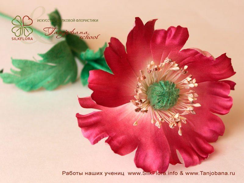 Работа Ангелины Ефремовой