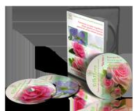 dvd-box-hobby1-300