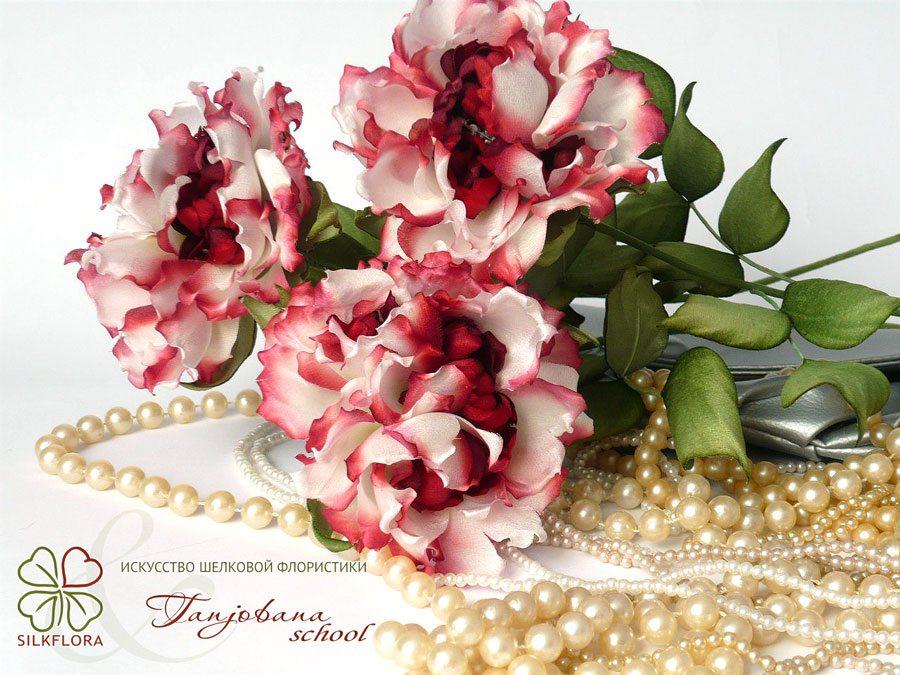 elena-morozova-silk-roze-tanjobana-1