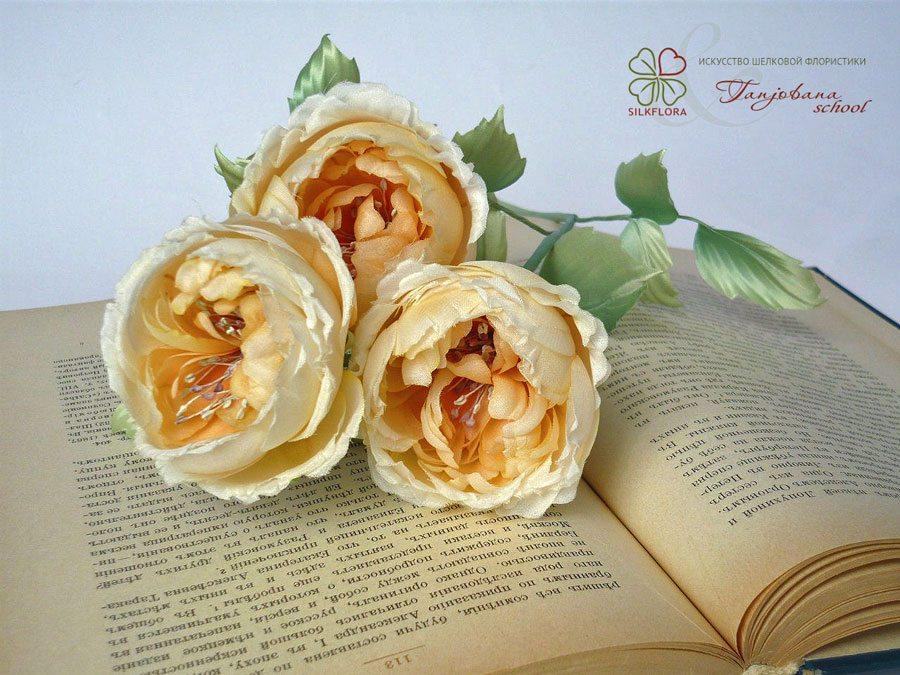 elena-morozova-silk-roze-tanjobana-3