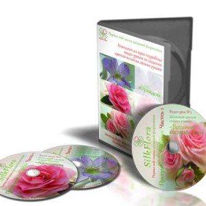 for-videoteka-silkflora-450x450