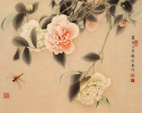 цветы камелии