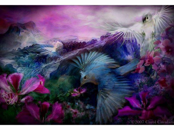 Цветы и птицы Кэрол Каваларис
