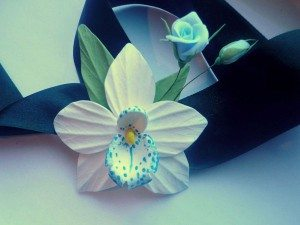 orhidtya-na-lente