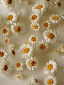 Декоративны ромашки из шелка