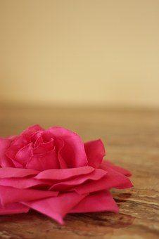 pink-1316775__340