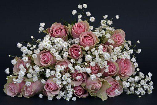 roses-1420719__340