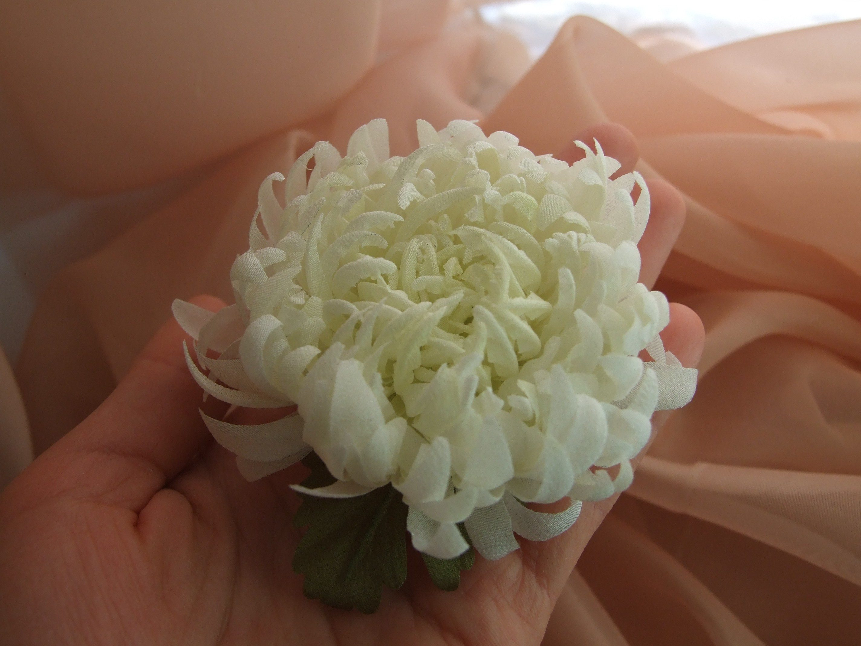 silk-chrysanthemum