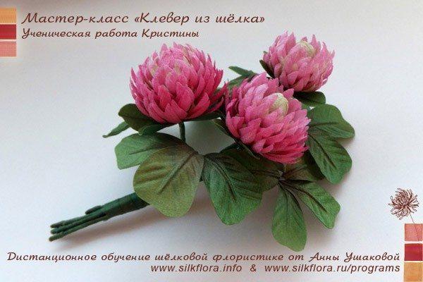 silk-clover-u3