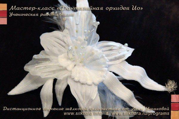 silk-fantazi-orchid-io-u2