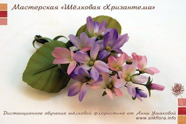 silk-fialki-600-3