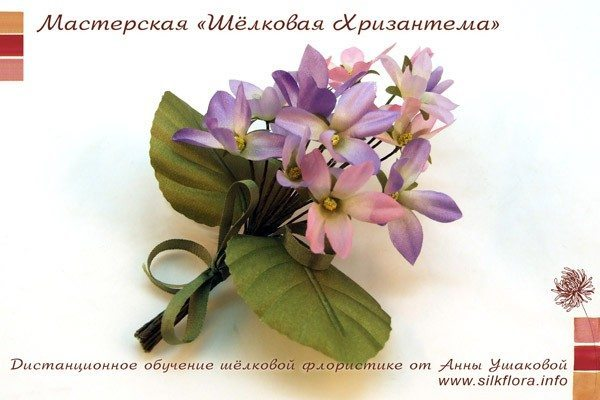 silk-fialki-600-4