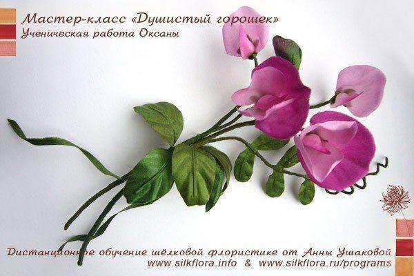 silk-goroshek-u1