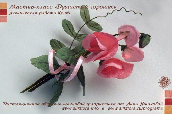 silk-goroshek-u3