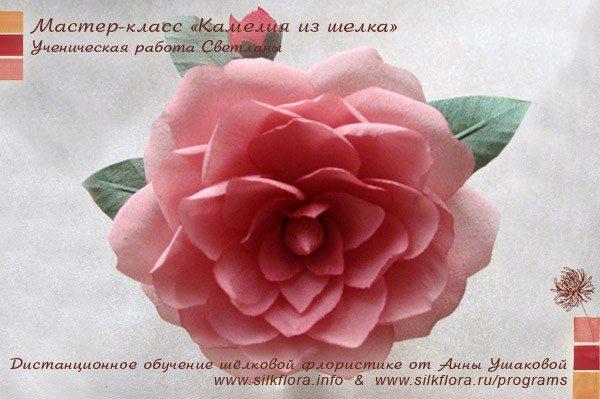 silk-kameliya-u1