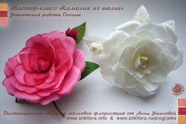 silk-kameliya-u3