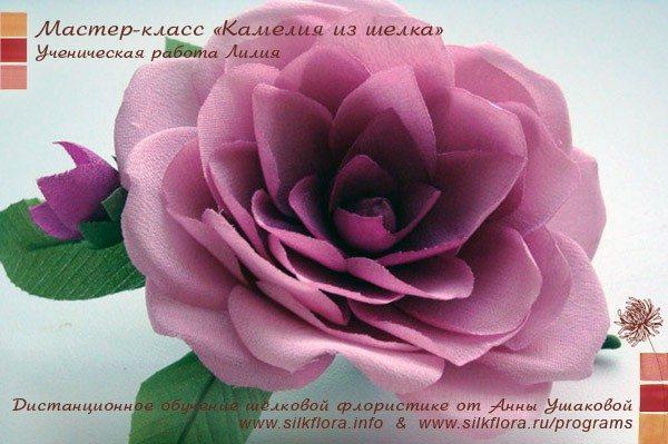 silk-kameliya-u4