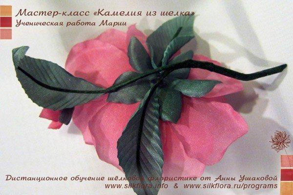 silk-kameliya-u5