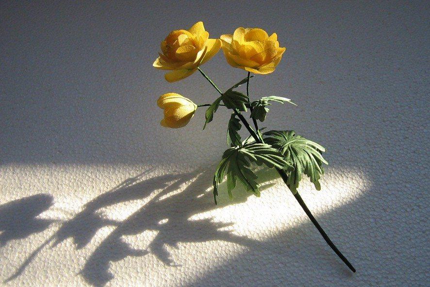 Победительница конкурса шелковых цветов SilkFlora 2011, номинация «VIP-мастер». Конкурсная работа — цветок из шелка «Купавка в солнечных лучах»