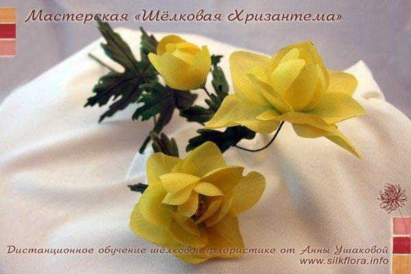silk-kupavka-600-3