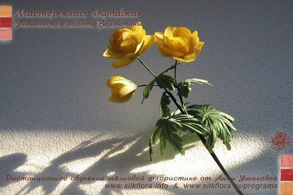 silk-kupavka-u1