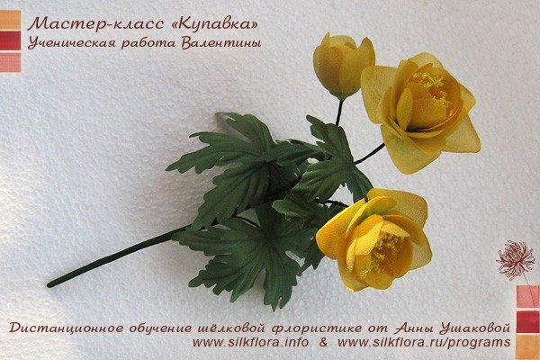 silk-kupavka-u2