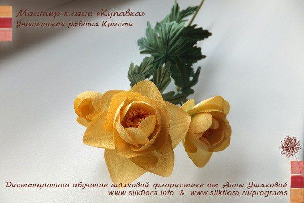 silk-kupavka-u31
