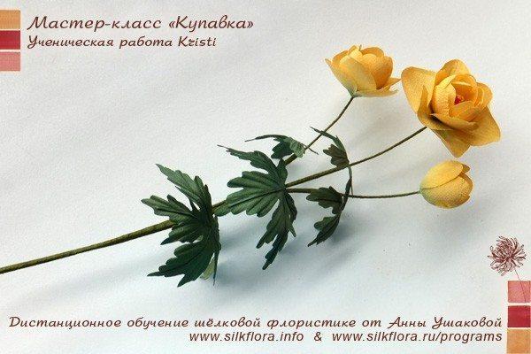 silk-kupavka-u41