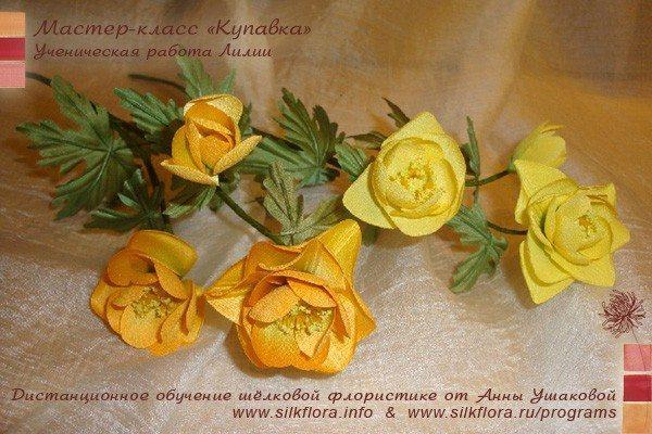 silk-kupavka-u51