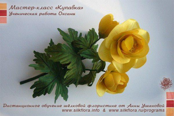 silk-kupavka-u61